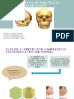 CRECIMIENTO DEL ESQUELETO CRANEOFACIAL