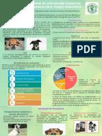 Electivo (1).pdf
