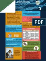 Poster de Electivo Epilepsia Canina Genes