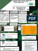 HERRAMIENTAS ETOLÓGICAS DE PRIMATES EN CAUTIVERIO