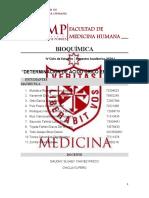 FORO 3 - Grupo 21B - Bioquímica Práctico