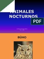 animalesnocturnos-130823035301-phpapp02