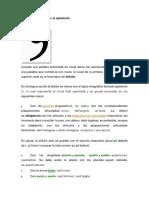 La elisión en italiano