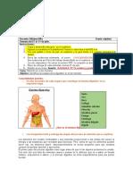Actividad 4 P 2 Séptimo digestión en el hombre.docx