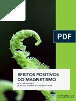 Ebook-Efeitos-do-Magnetismo-Keppe-Motor