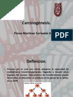 carcinognesis-170622041640