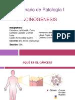 seminariodecarcinogenesis-141008105222-conversion-gate01.pdf