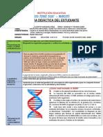 FICHA C Y T 5to (1).pdf