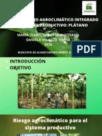 Plan de Manejo Agroclimático Integrado del Sistema productivo_ plátano (2)