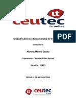 Tarea 2 consultoria.pdf