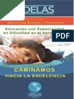 dificultadenaprendizaje-1.pdf