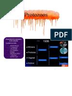 Para la clasificación de PROTOZOOS basado en la forma de locomoción