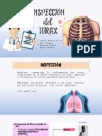 INSPECCIÓN DEL TÓRAX.pptx