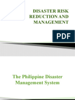 1 DISASTER RISK REDUCTION AND MANAGEMENT