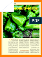Pimentão como cultivar.pdf