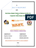 project report on equity