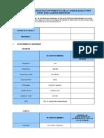 formato1_1_diagnostico_Informatico