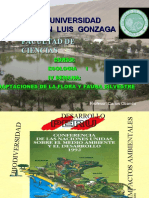III  Semana adpataciones de la flora y fauana silvestre.ppt