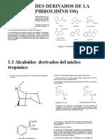 alcaloides-pirrodiñinicos-derivados-de-la-ornitina