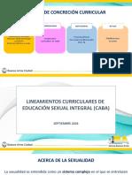PPT CONTENIDOS Y DIMENSIONES ESI (1)