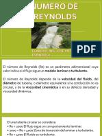 NO_REYNOLDS