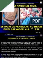 1.. ESTUDIO DE PANDILLAS.E.S. E.U Y CA.