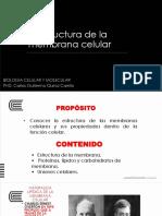 2. CQ ESTRUCTURA DE LA MEMBRANA CELULAR