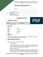 RESUMEN EJECUTIVO TIPICOCHA.docx