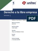 Tarea 1.1 S1 Derecho a la libre empresa - copia