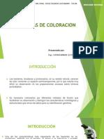 PRACTICA SEMANA 4-TECNICAS DE COLORACION