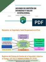 INDICADORES DE GESTIÓN EN SEGURIDAD Y SALUD OCUPACIONAL (1).pdf