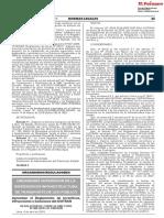 RIIS.pdf