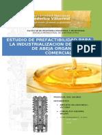 149997025-Estudio-de-Inversion-Del-La-Miel-de-Abeja-Organica-1