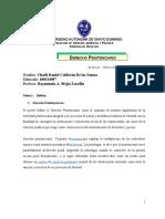 TRABAJO DE DERECHO PENITENCIARIO.doc