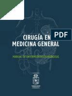 libro web55.pdf