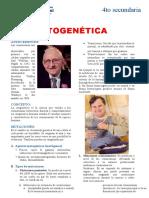 La-Citogenética-para-Cuarto-Grado-de-Secundaria (1)-convertido