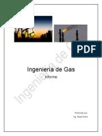 INFORME ING. DE GAS