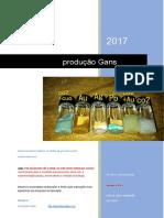 PROTOCOLO-PRODUÇÃO-DE-GANS-TRADUZIDO.pdf