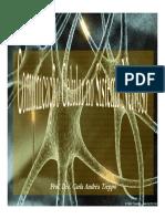 1_Comunicação celular no SN(1).pdf