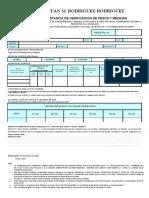 Formato Constancia Verificacion de Pesos y Medidas
