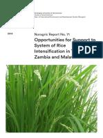 Rice noragric_report_no._71.pdf