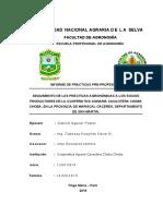 PPP AGUILAR PASTOR. v.docx