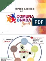GUIA 1 MATERIAL COMPLEMENTARIO COMUNA-PRINCIPIOS BASICO
