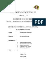 CASOS ESPECIALES DE PROGRAMACION BINARIA