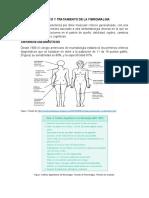 Diagnostico y tratamiento de la fibromialgia