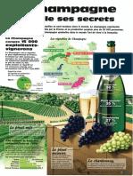 Infographie Carrefour - Le Champagne Dévoile Ses Secrets
