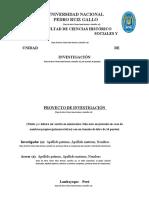 4.-- Esquema proyecto de Investigación.docx