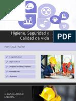 Higiene, Seguridad y Calidad de Vida GRUPO 2 - Copy.pdf