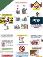 Folleto 10 reglas de Oro seguridad Minera