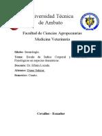 Escala de condición corporal semiología.docx